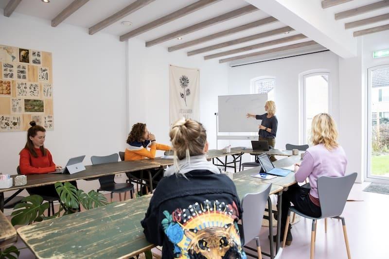 opleiding systeemtherapeut